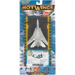 Hot Wings - F-14 Tomcat